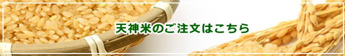 2010年度 天神米のご注文はこちら 自然栽培 天神自然農園